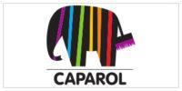 150x300 Logo Caparol Peinture